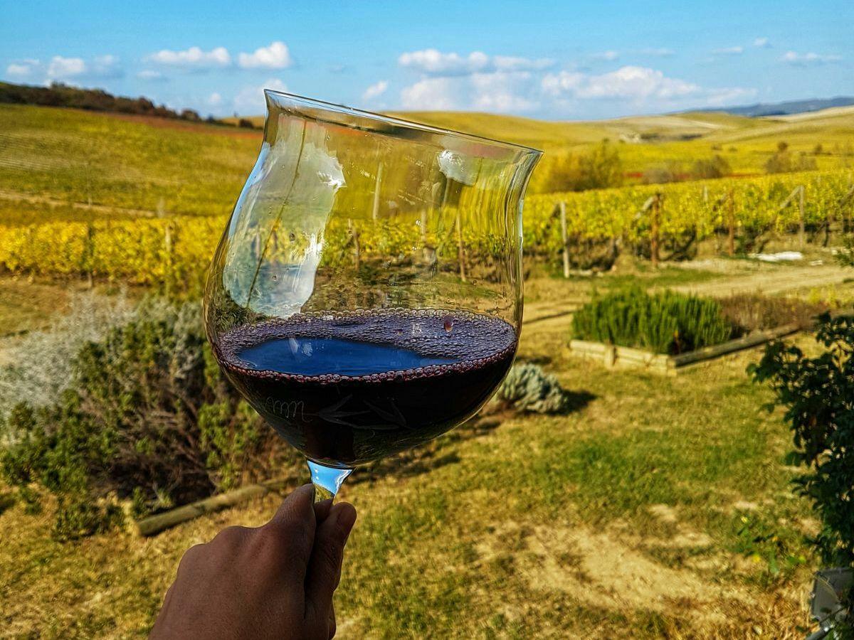 Супертоскансикие вина: Сассикайя и Орнелайя